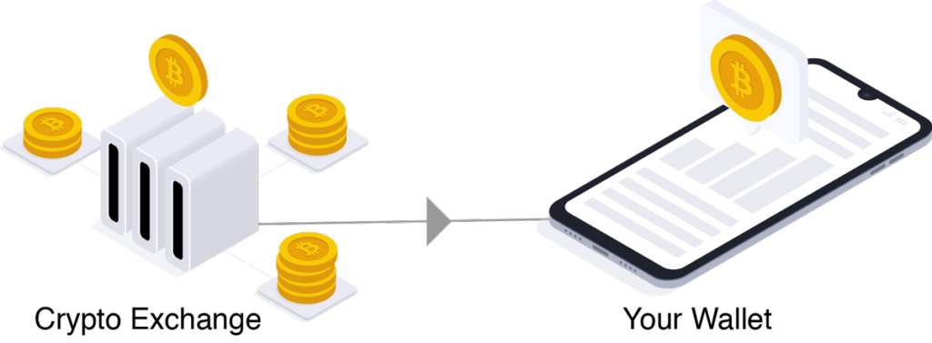 crypto exchange to wallet